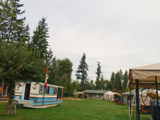 Shuswap Lake Motel and Resort: View in front of the kitchen units