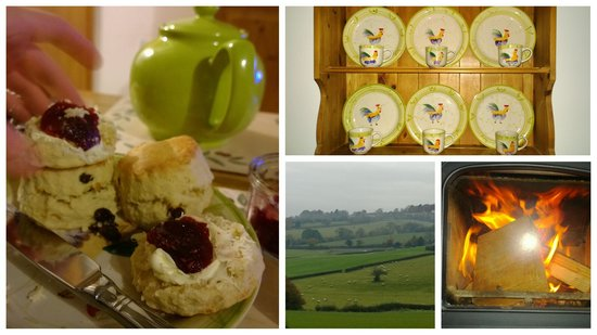 Withy Mills Farm: scones