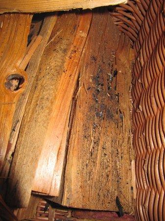 Ferienart Resort & Spa: Cendres au fond du panier à bois