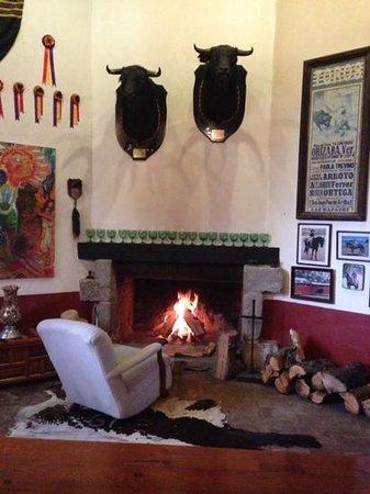 Hacienda de la Luz Boutique & Mountain Park Resort: chimenea del salon de juegos