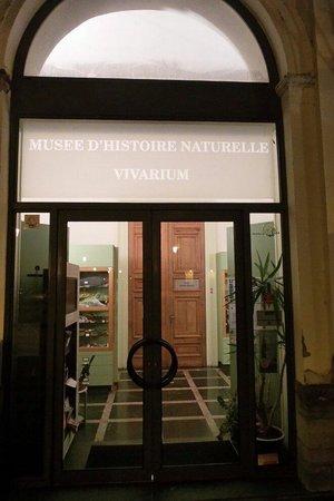Musee d'Histoire Naturelle et Vivarium
