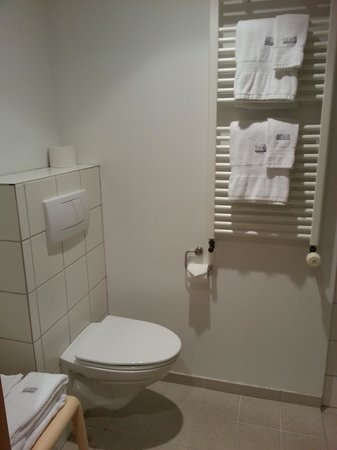 Silica Hotel : clean small toilet in the room