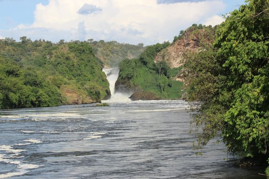 Paraa Safari Lodge: Murchison Falls
