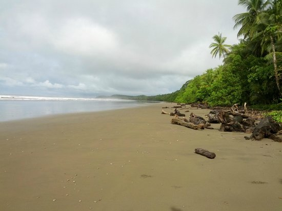 Shelter from the Storm : Playa Hermosa near Uvita, 10 minutes from SFTS