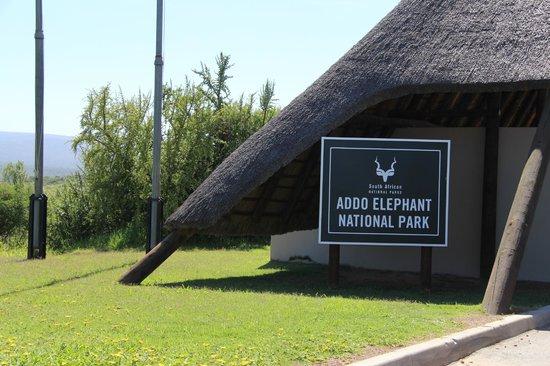 Halstead Farm : Addo Elephant Park - Ingang