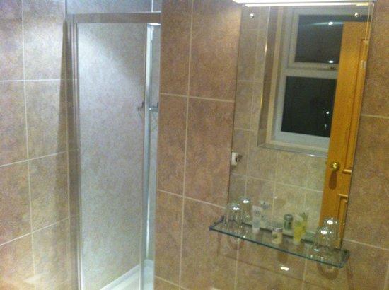 The Carousel Hotel, Blackpool : Shower