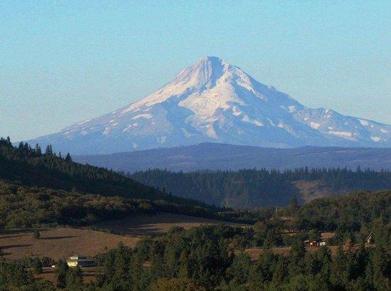 Lyle, WA: Ohhhh la la Mt. HOOD