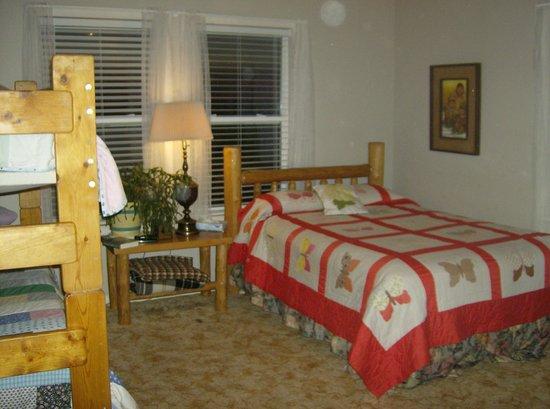 Lyle, WA: Pine siskin family bunk room