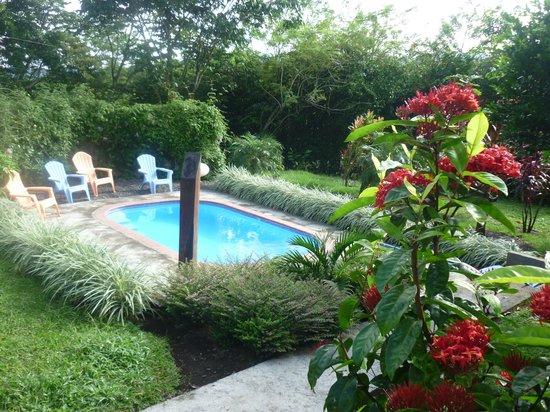 B&B Hotel Sueno Celeste: le coin piscine du sueno céleste