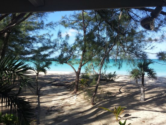 Fernandez Bay Village: Standing at my bedroom sliding doors looking down the path to the water