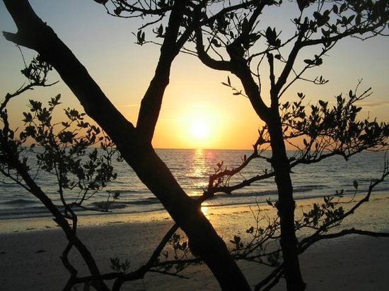 Dunedin, FL: Sunset at Honeymoon Island