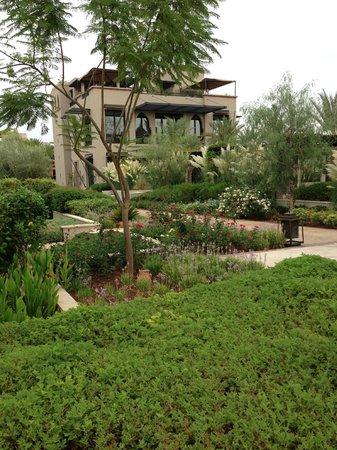 Four Seasons Resort Marrakech : jardines y flores