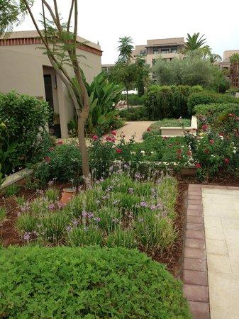 Four Seasons Resort Marrakech: jardines y flores