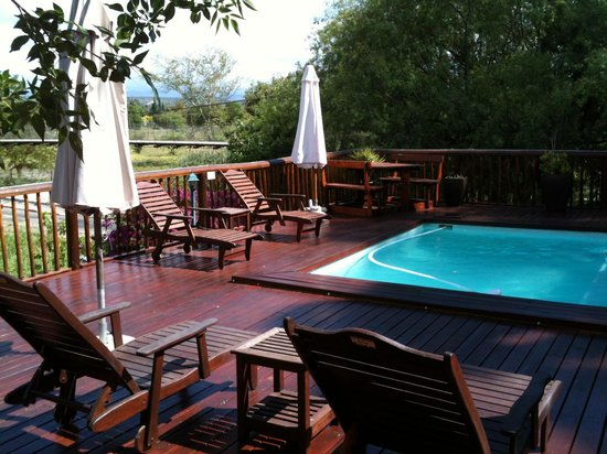 Gumtree Guest House: Terrasse mit Pool