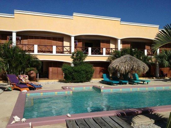 Djambo: Pool view