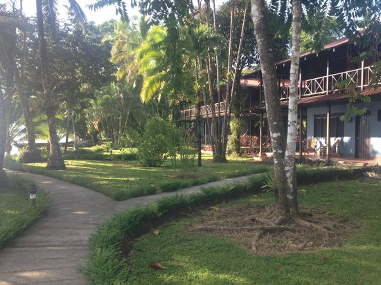 Tortuga Lodge & Gardens: Totuga Lodge Casitas
