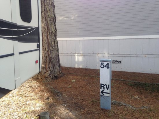 Pelican Point RV Park: Our site hook up. #54