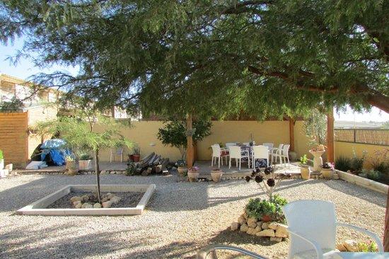 iBex (iBike) Unique Desert Inn: garden area behind the hotel
