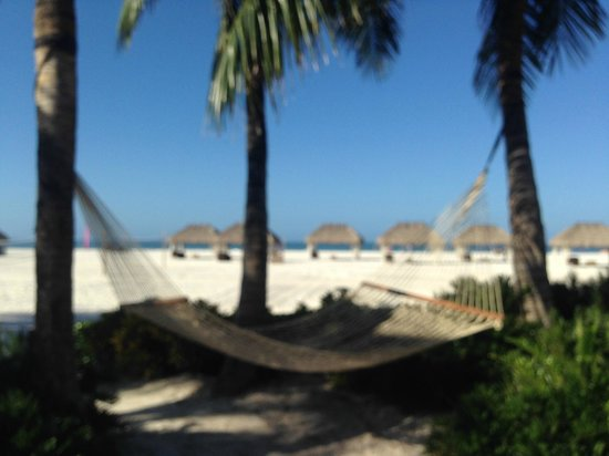JW Marriott Marco Island Beach Resort : my nap spot