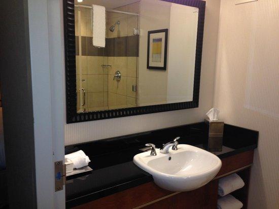 Hilton Baltimore BWI Airport: Bathroom