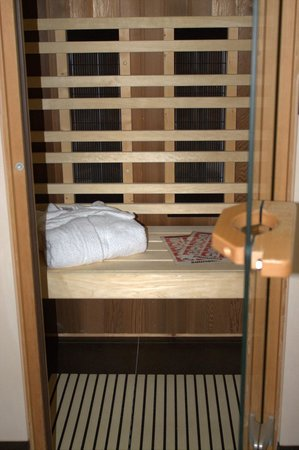 Hotel Schloss Reinach: Sauna