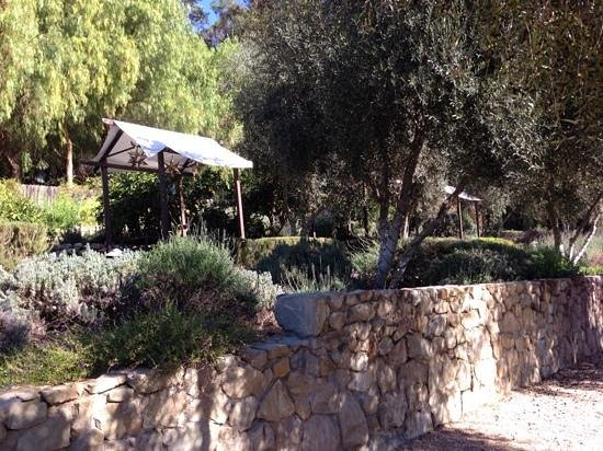 Ojai Valley Inn & Spa: herb garden!!