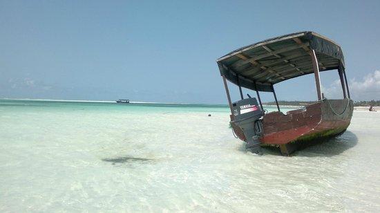 Karafuu Beach Resort and Spa: Playa de Karafuu, marea subiendo