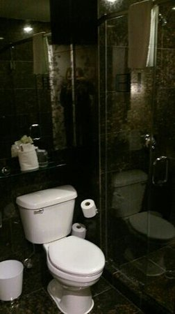 Hotel East Houston: modern bathroom