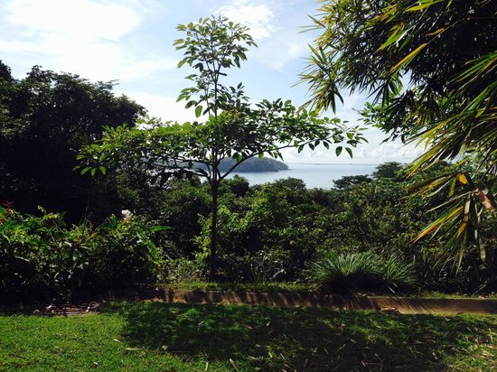 Eco Venao: View from La Casita