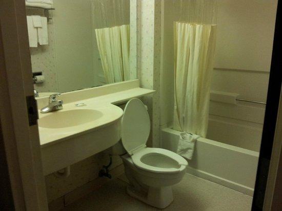 Microtel Inn & Suites by Wyndham Atlanta Airport: Bathroom