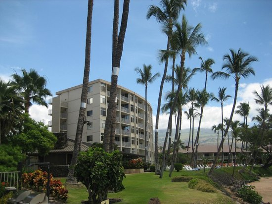 The Hale Pau Hana : Our Condo 5th floor #504