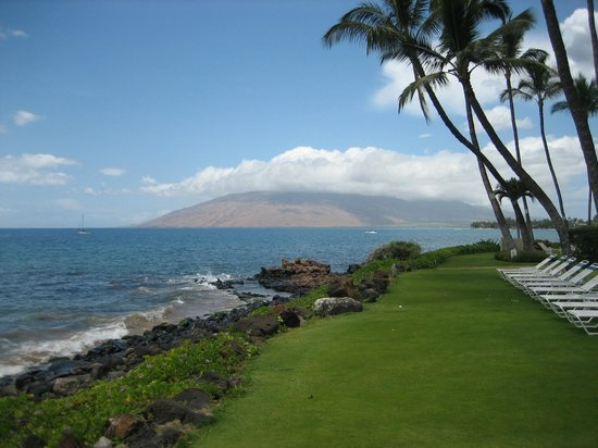 The Hale Pau Hana : Our front yard