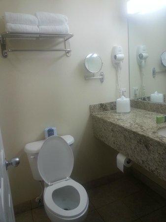 Sunshine Suites Resort: 8