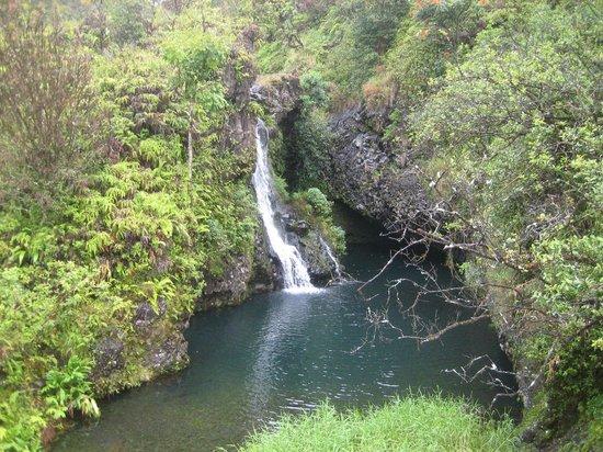 Hana Highway - Road to Hana: One of many falls