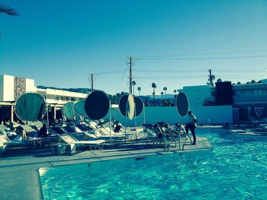 Ace Hotel and Swim Club: Pool area