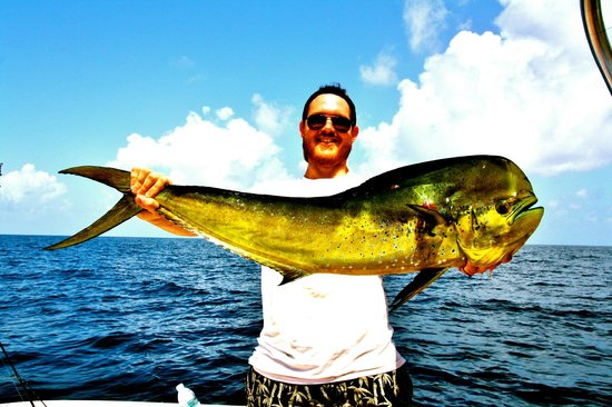Deep sea fishing charters in carrabelle florida picture for Deep sea fishing trips florida