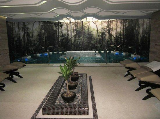 Azul Ixtapa Grand Spa & Convention Center: Spa Sensory Pool