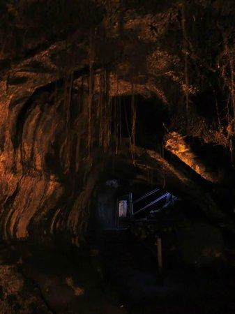 Nahuku - Thurston Lava Tube: The Tube