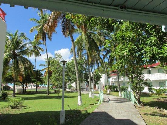 Starfish Jolly Beach Resort: Walk to beach