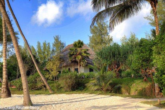 Pongwe Beach Hotel : Pongwe Beach Cottages