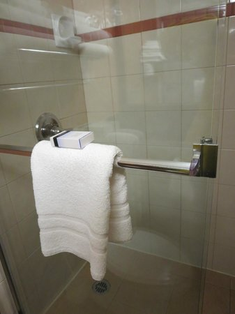 Sunset Inn and Suites: big shower