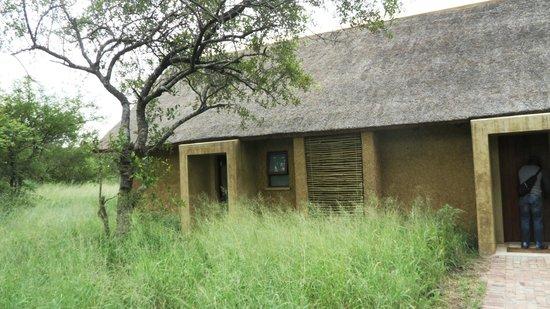 Kapama Southern Camp : Exterior of room