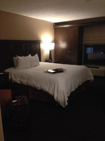 Hampton Inn Tuscaloosa-University : king bed