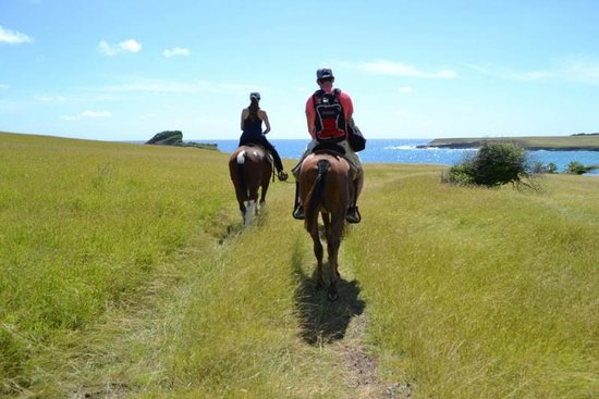 Atlantic Shores Riding Stables: getting to the beach