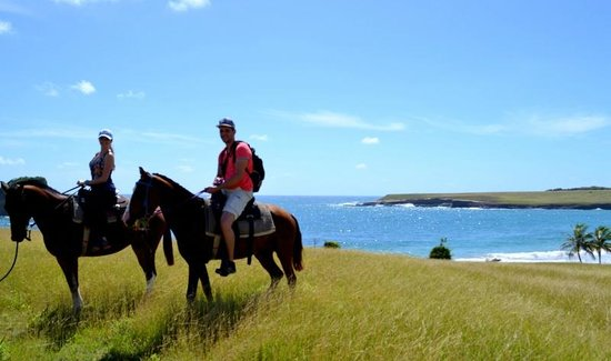Atlantic Shores Riding Stables: view from the hill