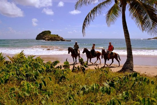 Atlantic Shores Riding Stables: beautiful beach