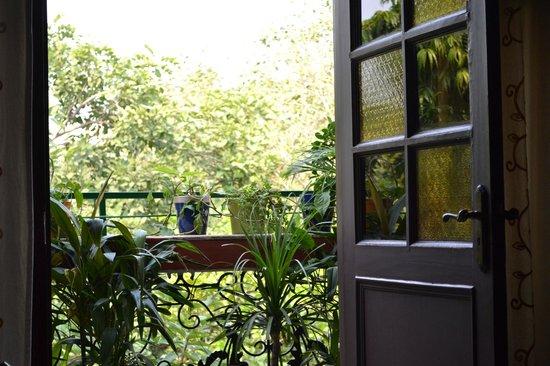 On The House: Main floor and Balcony...adventure awaits!