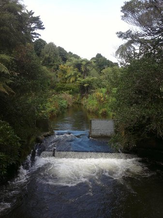 New Plymouth, New Zealand: The Huatoki Walkway at the Huatoki Domain