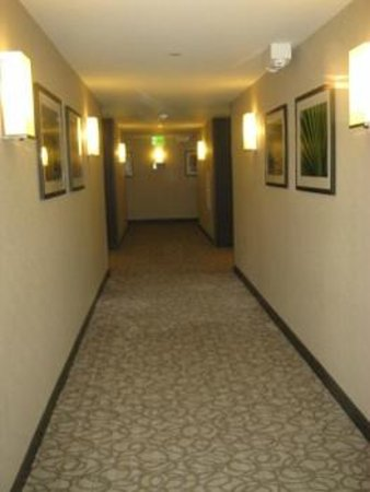 Hilton Garden Inn Los Angeles Marina Del Rey : Hallway