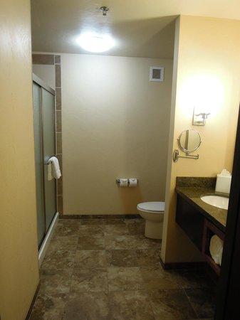 Holiday Inn Hotel & Suites Durango Central: Bathroom